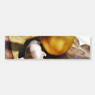 De las manzanas de ajo todavía de los clavos vida pegatina de parachoque