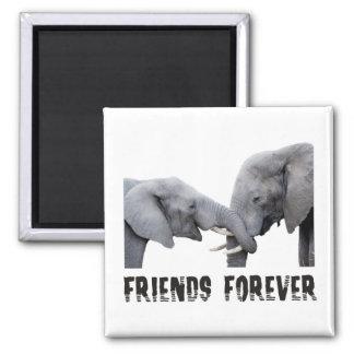De los amigos abrazo/que se besa de los elefantes  imán cuadrado