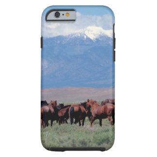 De los caballos caso del oeste salvaje del iPhone Funda De iPhone 6 Tough