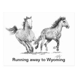 De los caballos FINAL 11 x 16.jpg otra vez, Postal