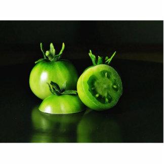 De los tomates verdes todavía de la imagen estudio escultura fotográfica