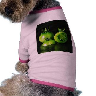 De los tomates verdes todavía de la imagen estudio camisa de perrito