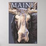 De MaineMoose cierre para arriba Poster