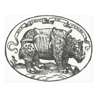 de Medici's Rhinoceros Postcard