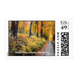 De New Hampshire sello naturalmente
