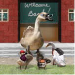 ¡De nuevo a escuela, pequeños patos! Esculturas Fotograficas