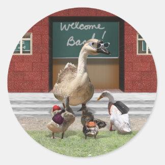 ¡De nuevo a escuela, pequeños patos! Pegatina Redonda