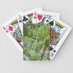 De nuevo a la naturaleza baraja de cartas