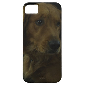 De oro iPhone 5 Case-Mate funda