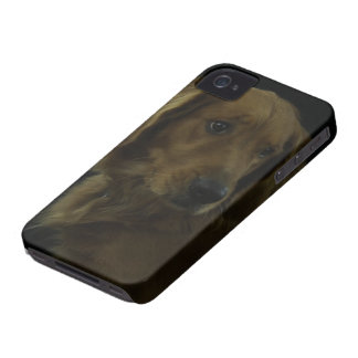 De oro iPhone 4 Case-Mate carcasa