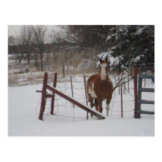 De pasos en la nieve postal