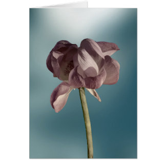 De-saturated Lotus Flower Greeting Card