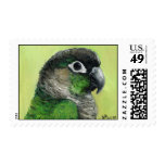 """De """"sello del arte del pájaro Cheeked Conure verde"""