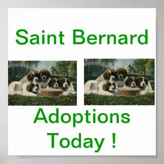 De St Bernard del perro de la adopción muestras ho Póster