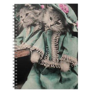 De última hora llegue el espejo cuadernos