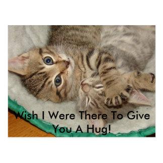 Dé una postal del gatito del abrazo