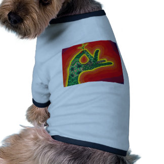 de una semilla minúscula de la bellota, un roble camiseta con mangas para perro