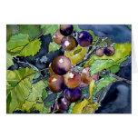 de uva todavía de la vid tarjeta de felicitación m