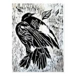 Dead Bird Post Card