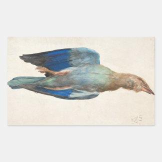 Dead Blue Roller by Albrecht Durer Rectangular Sticker