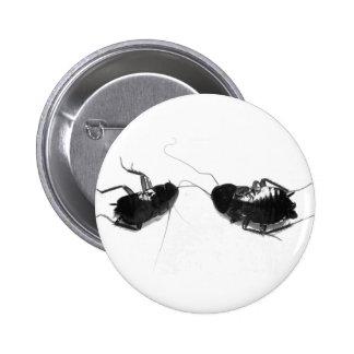 Dead Cockroach Pinback Button