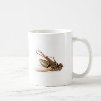 Dead fly mugs