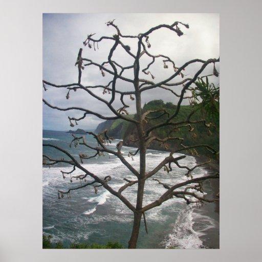 """Dead Hawaiian Tree Poster"""" Poster"""