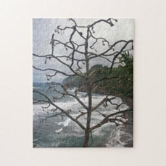 Dead Hawaiian Tree Puzzle