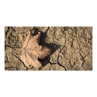 Dead Leaf on Dry Dirty Soil - Autumn Photography Photo Cards