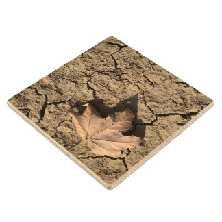 Dead Leaf on Dry Dirty Soil - Autumn Photography Wooden Coaster