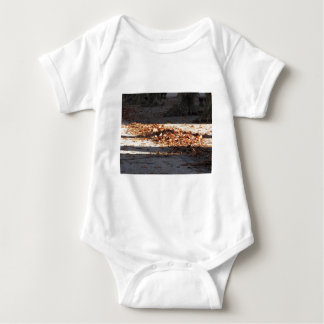 Dead leaves lying on the ground in the fall baby bodysuit