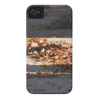 Dead leaves lying on the ground in the fall iPhone 4 Case-Mate case