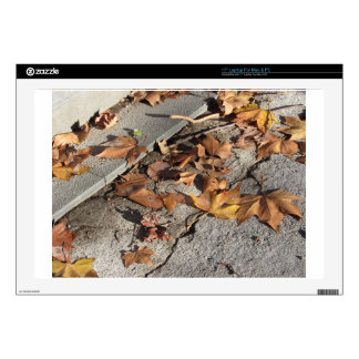Dead leaves lying on the ground in the fall laptop decal