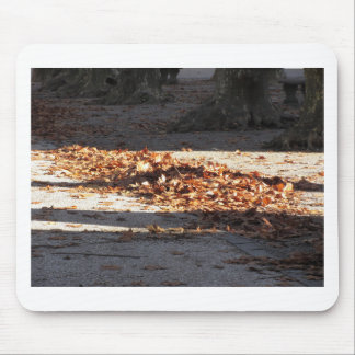 Dead leaves lying on the ground in the fall mouse pad