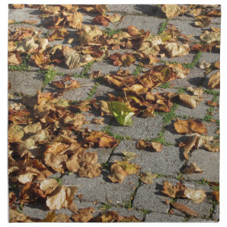 Dead leaves lying on the ground in the fall napkin