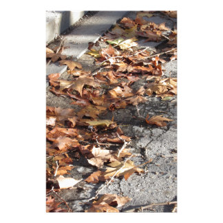 Dead leaves lying on the ground in the fall stationery