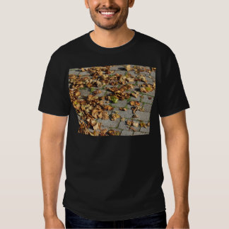 Dead leaves lying on the ground in the fall tee shirt