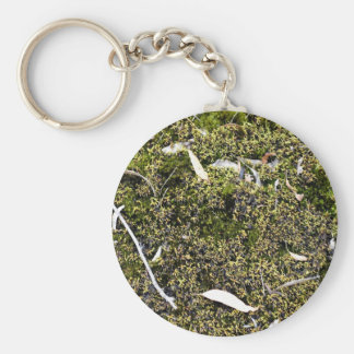 Dead leaves on the mossy ground key chains