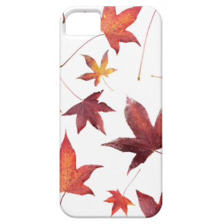 Dead Leaves over White iPhone SE/5/5s Case