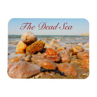 Dead Sea, Jordan Magnet