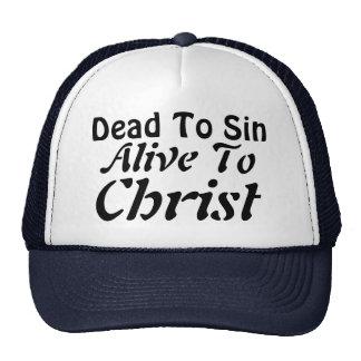 Dead To Sin; Alive To Christ Trucker Hat