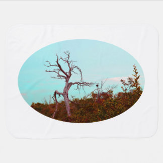 dead tree against green leaves sky teal swaddle blanket