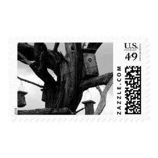 Dead Tree and Birdhouses Postage