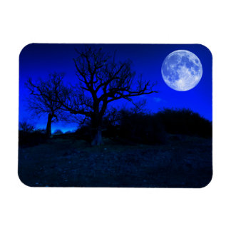 Dead Tree At Midnight With A Glowing Full Moon Rectangular Photo Magnet