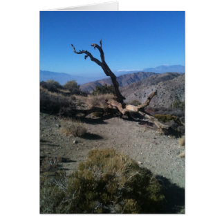 dead tree at overlook greeting card