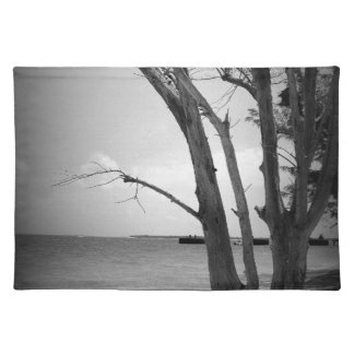 Dead Tree by the Sea Cloth Placemat