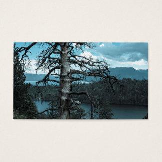 Dead Tree In Lake Tahoe Business Card