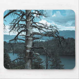 Dead Tree In Lake Tahoe Mouse Pad