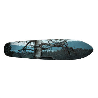 Dead Tree In Lake Tahoe Skateboard