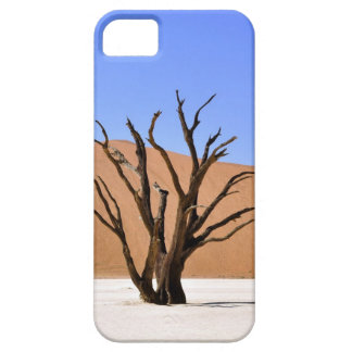 Dead tree in Namib desert iPhone 5 Covers